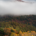Chimney Top Mountain in Fog