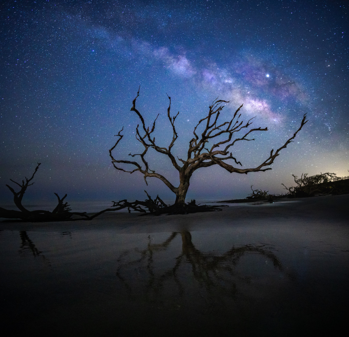 Milky Way Over Driftwood Beach