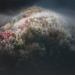 Freezing fog on Cowrock Mountain