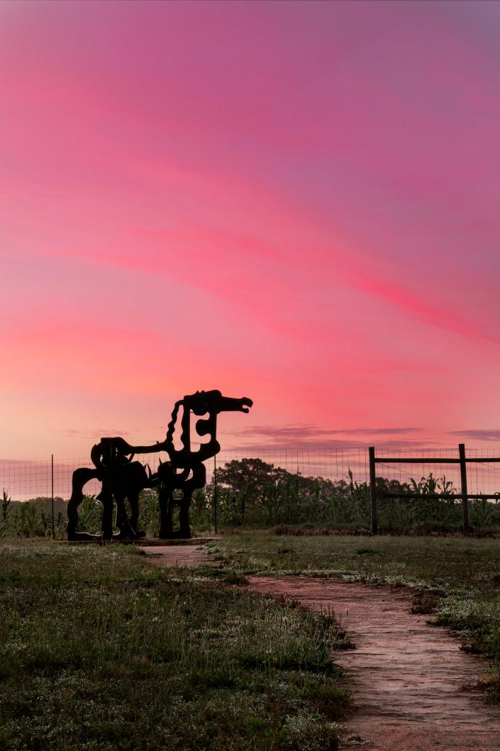 Iron Horse Sunrise 2020
