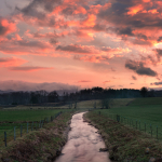 Stream Into Sunrise