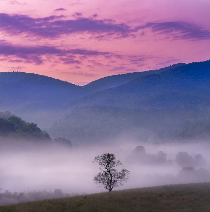 Under a Foggy Sunrise