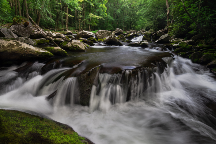 Tremont in the Smokies